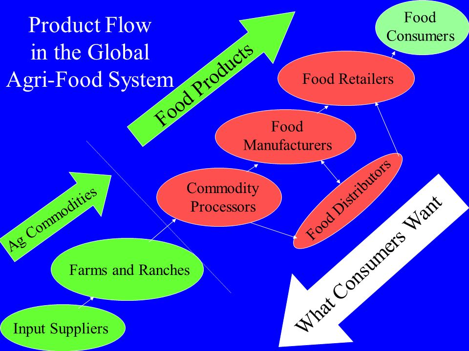 Product Flow in the Global Agri-Food System