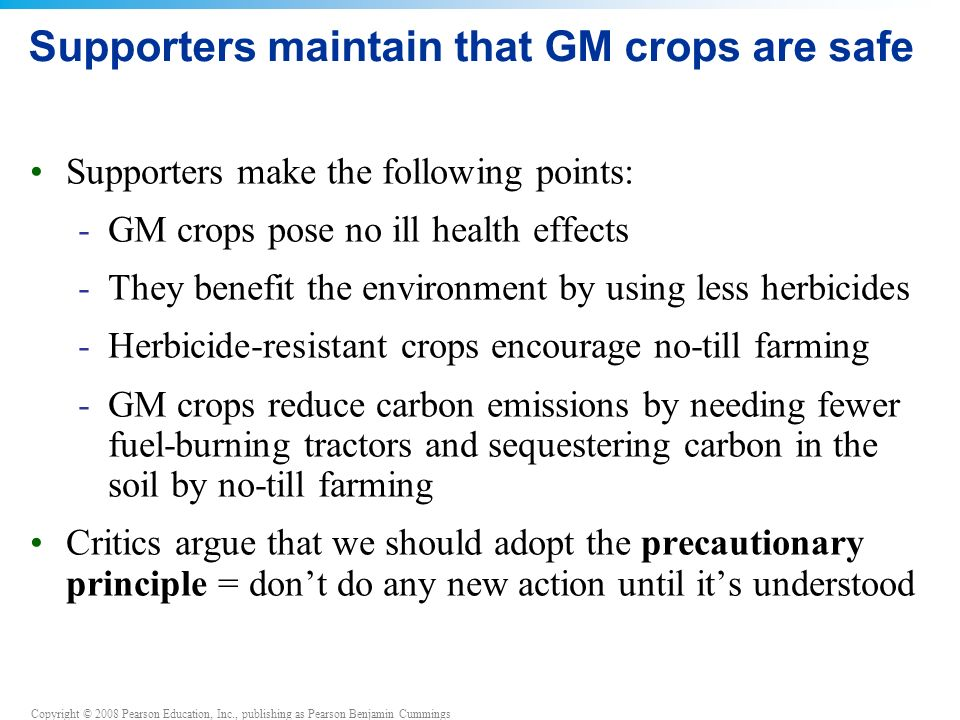 Supporters maintain that GM crops are safe