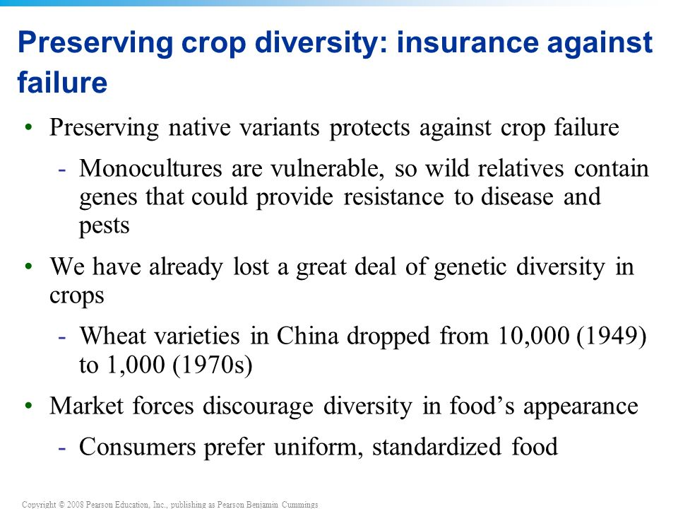 Preserving crop diversity: insurance against failure