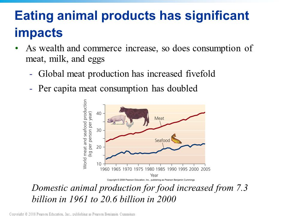 Eating animal products has significant impacts