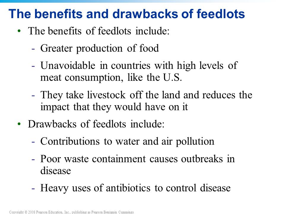The benefits and drawbacks of feedlots