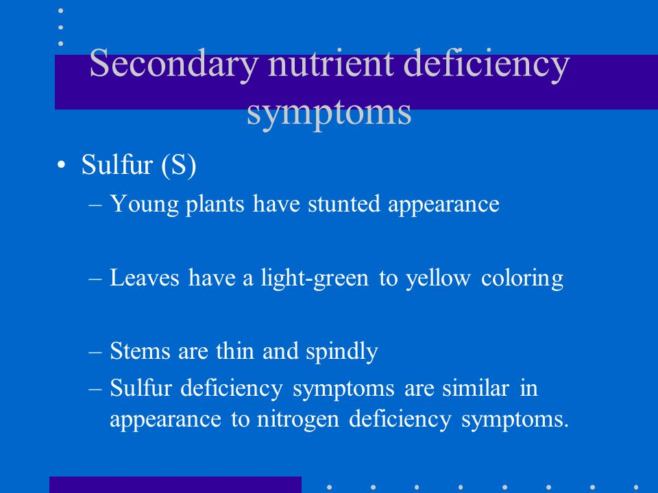Secondary nutrient deficiency symptoms