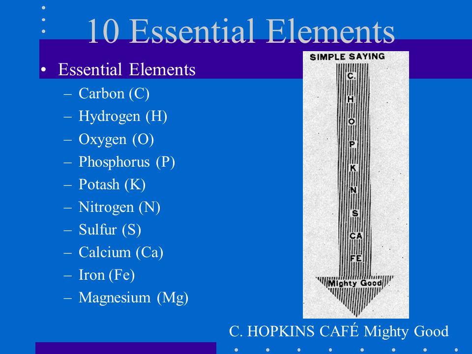 10 Essential Elements Essential Elements Carbon (C) Hydrogen (H)