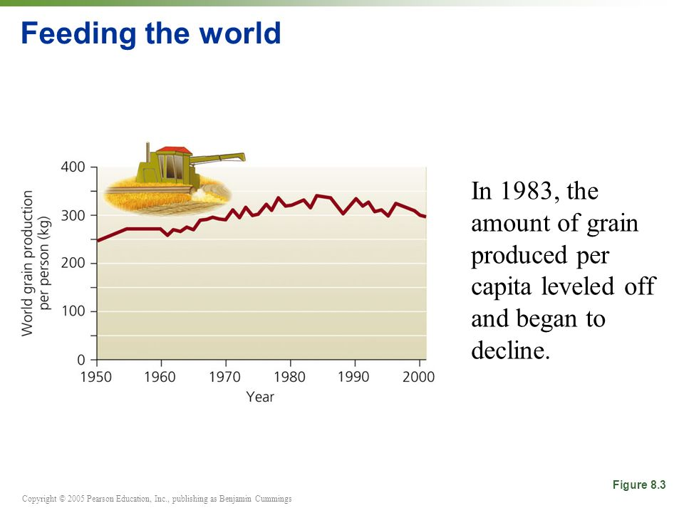 Feeding the worldIn 1983, the amount of grain produced per capita leveled off and began to decline.