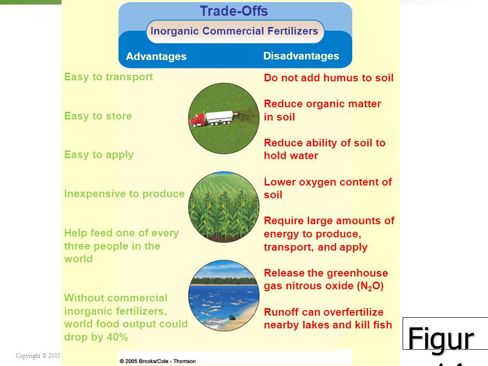 Inorganic Commercial Fertilizers