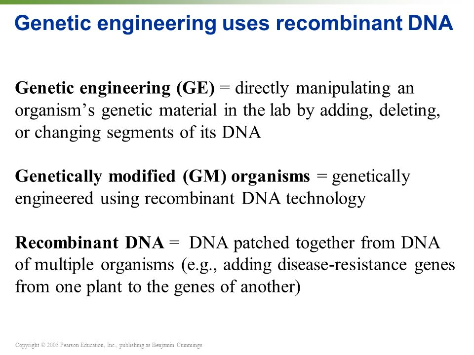 Genetic engineering uses recombinant DNA