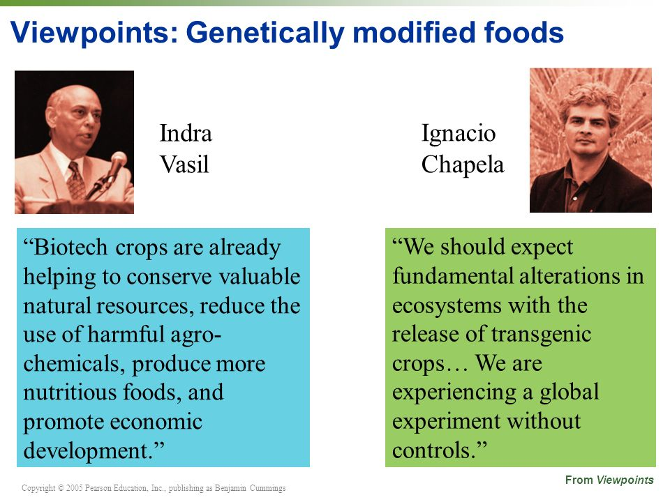 Viewpoints: Genetically modified foods