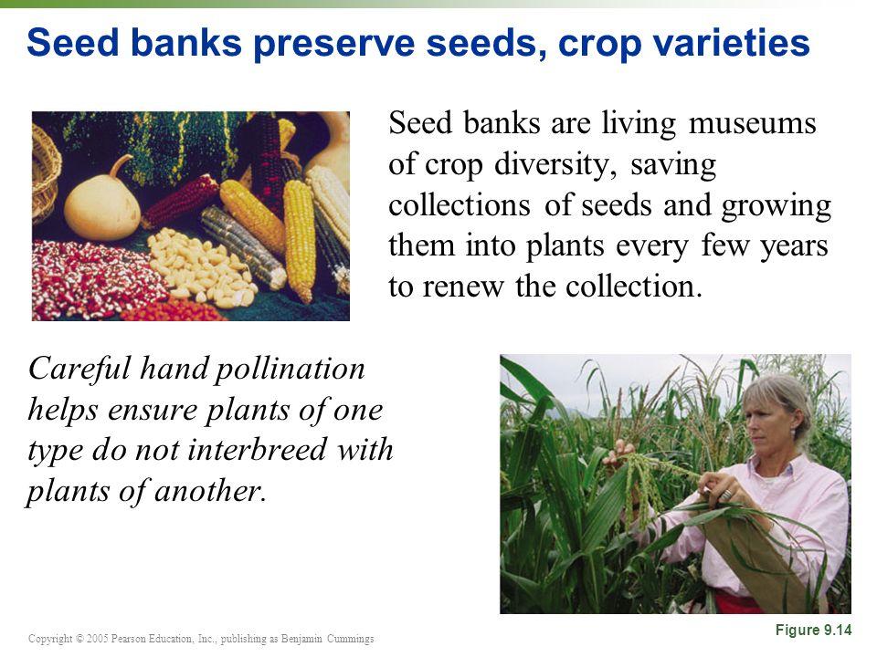 Seed banks preserve seeds, crop varieties
