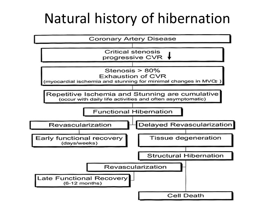 Natural history of hibernation