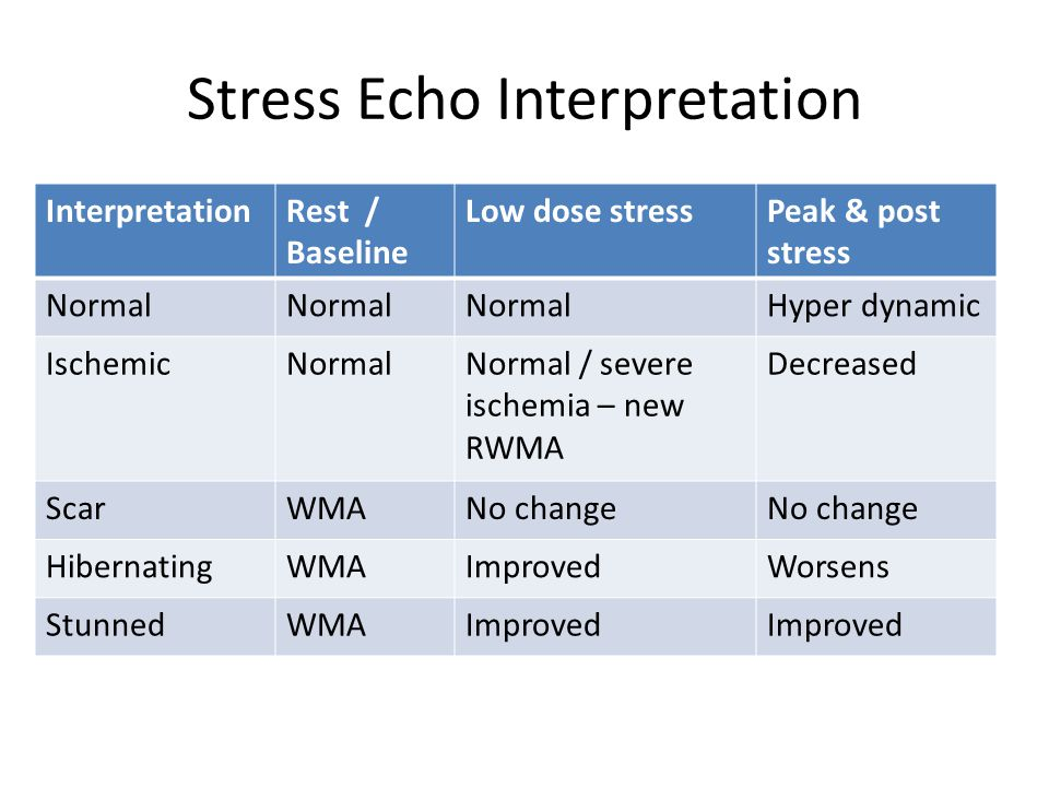 Stress Echo Interpretation