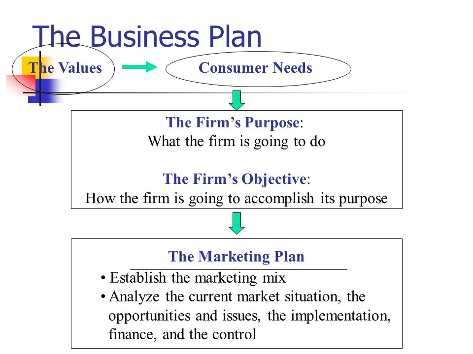 The Business Plan The Values Consumer Needs The Firm's Purpose: