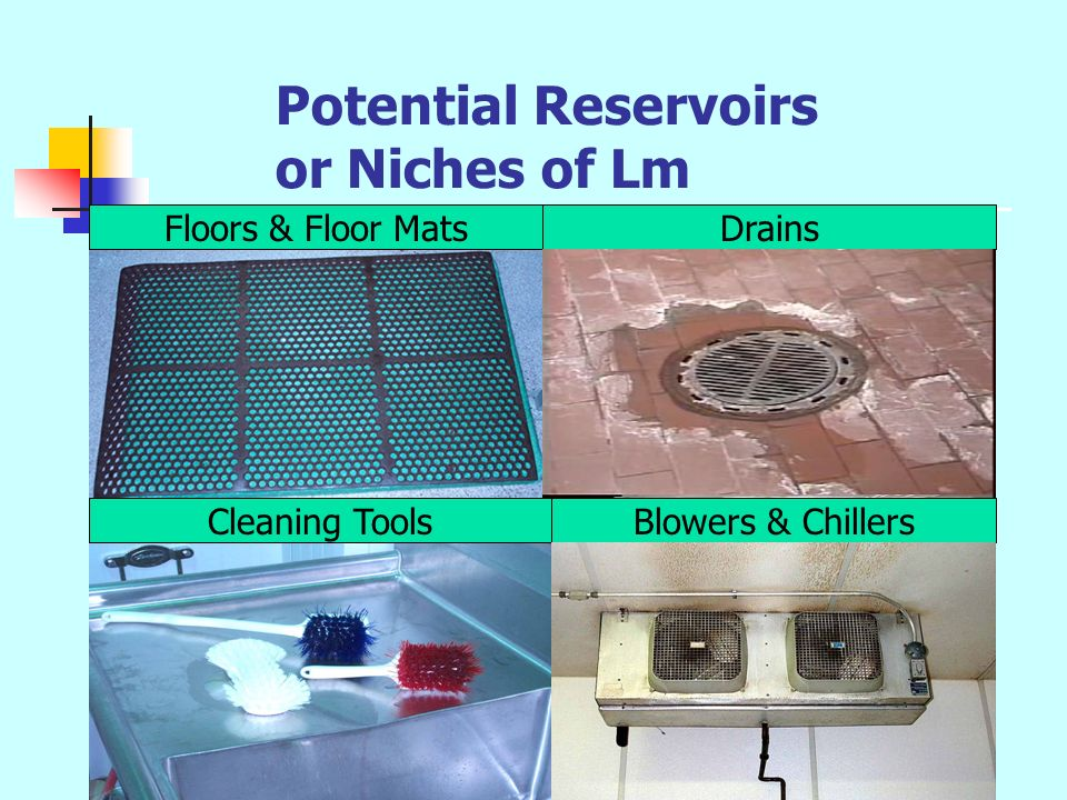 Potential Reservoirs or Niches of Lm