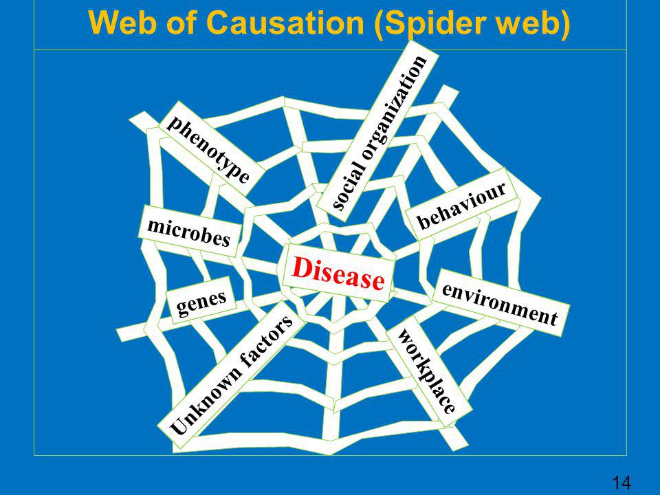 Web of Causation (Spider web)