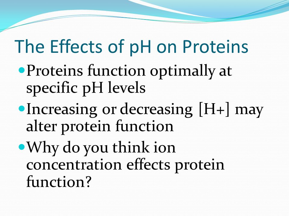 The Effects of pH on Proteins