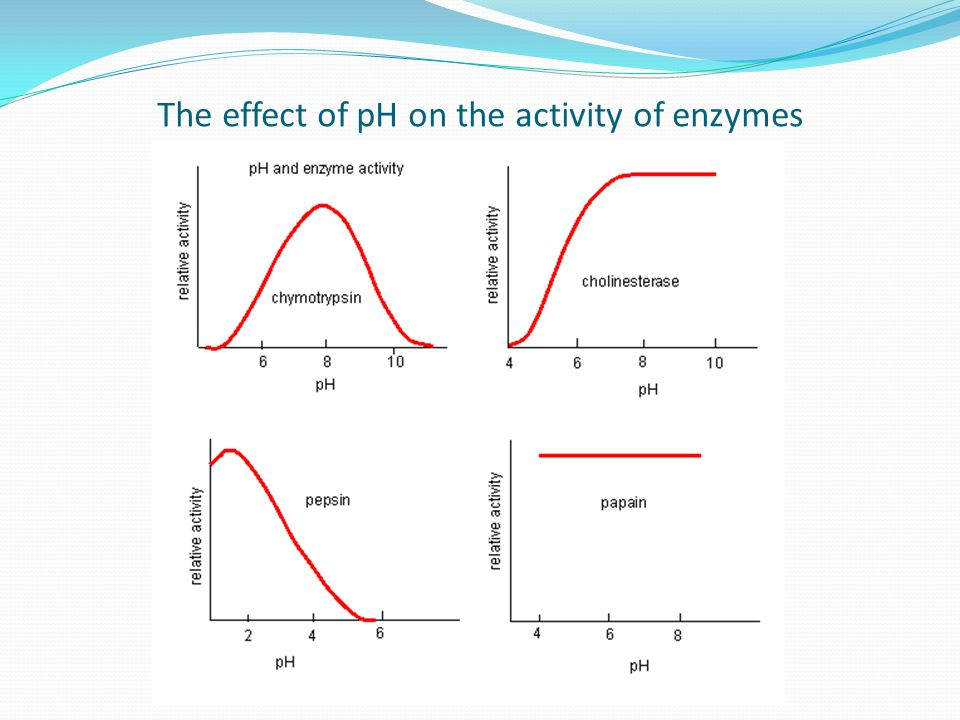 The effect of pH on the activity of enzymes
