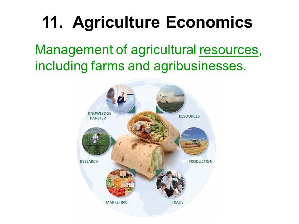 11. Agriculture Economics
