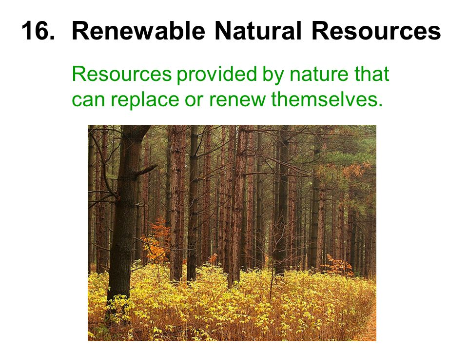 16. Renewable Natural Resources