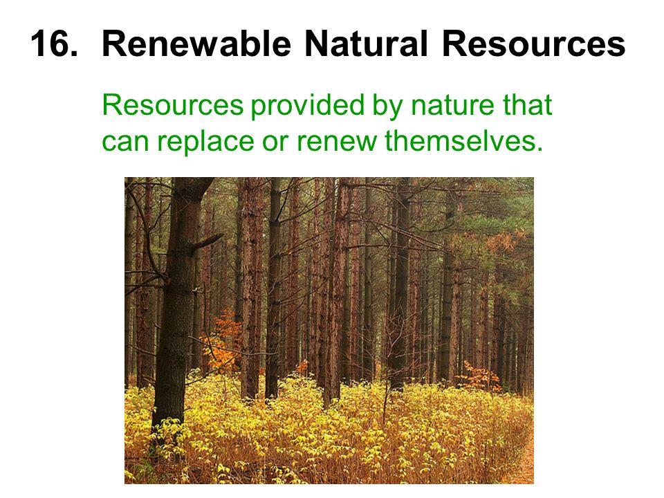 16. Renewable Natural Resources