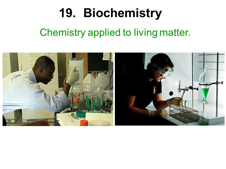 19. Biochemistry Chemistry applied to living matter.