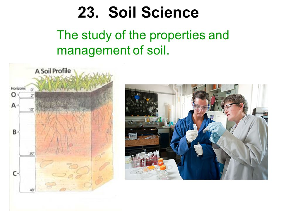 23. Soil Science The study of the properties and management of soil.