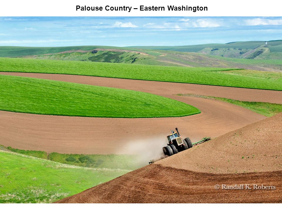 Palouse Country – Eastern Washington