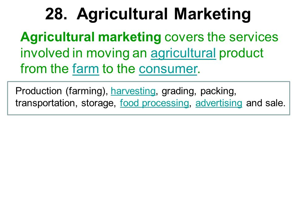 28. Agricultural Marketing