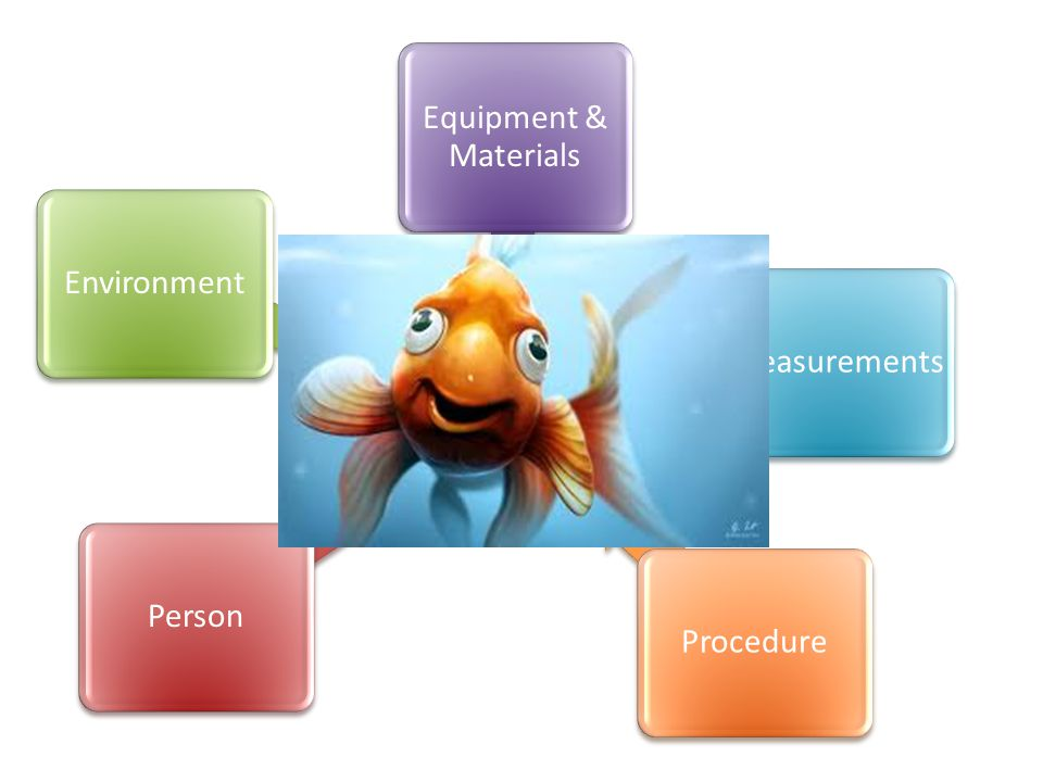 Equipment & Materials Environment Measurements Person Procedure