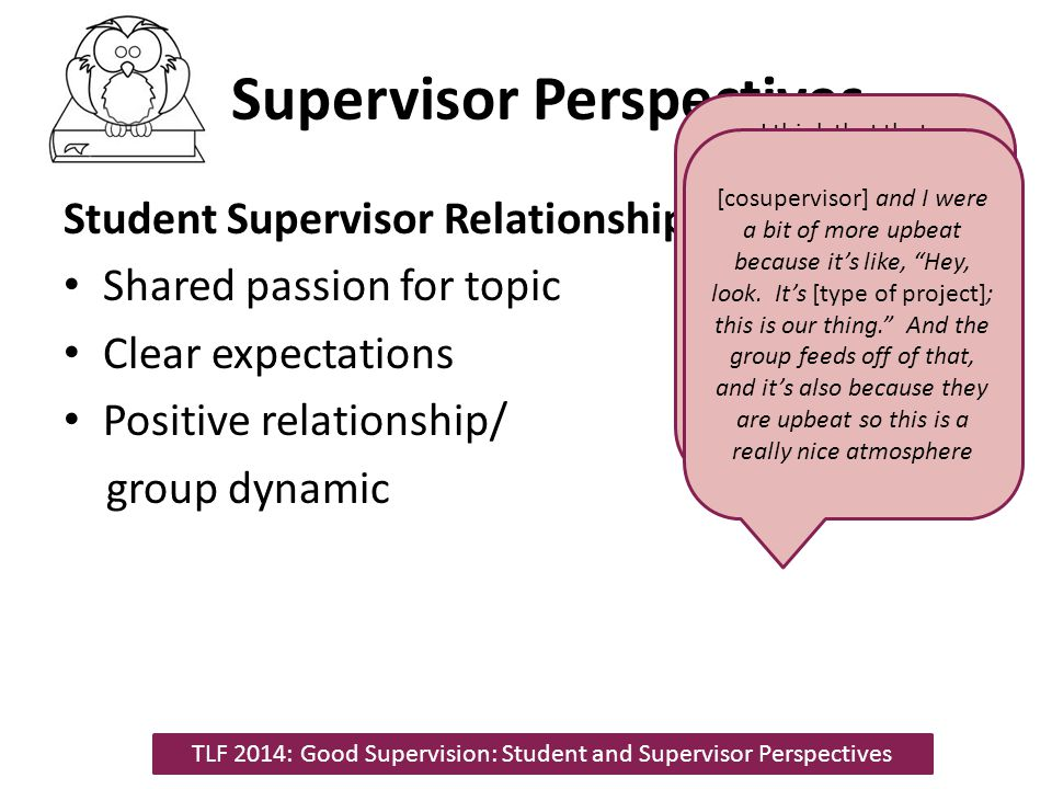 Supervisor Perspectives