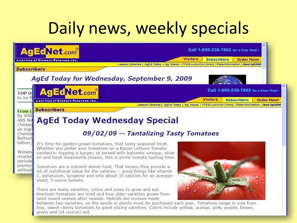 Daily news, weekly specials