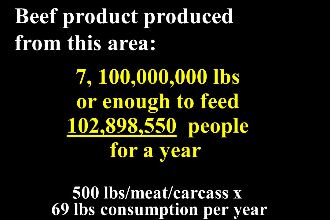 69 lbs consumption per year