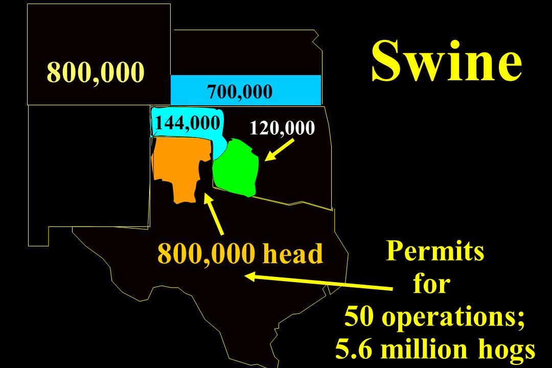 Swine 800,000 800,000 head Permits for 50 operations; 5.6 million hogs