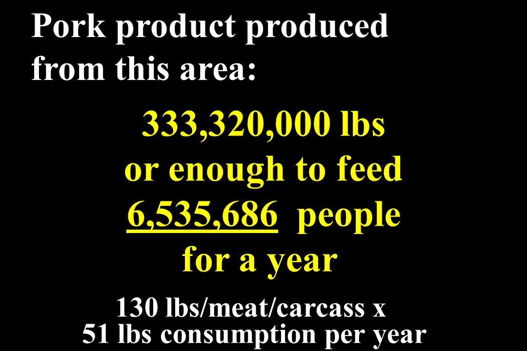 51 lbs consumption per year