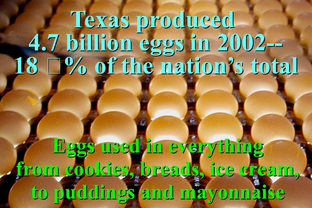 Texas produced 4.7 billion eggs in 2002-- 18 % of the nation's total