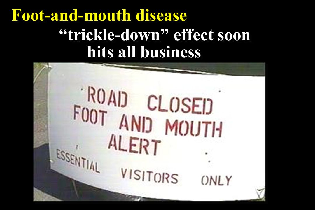 Foot-and-mouth disease trickle-down effect soon