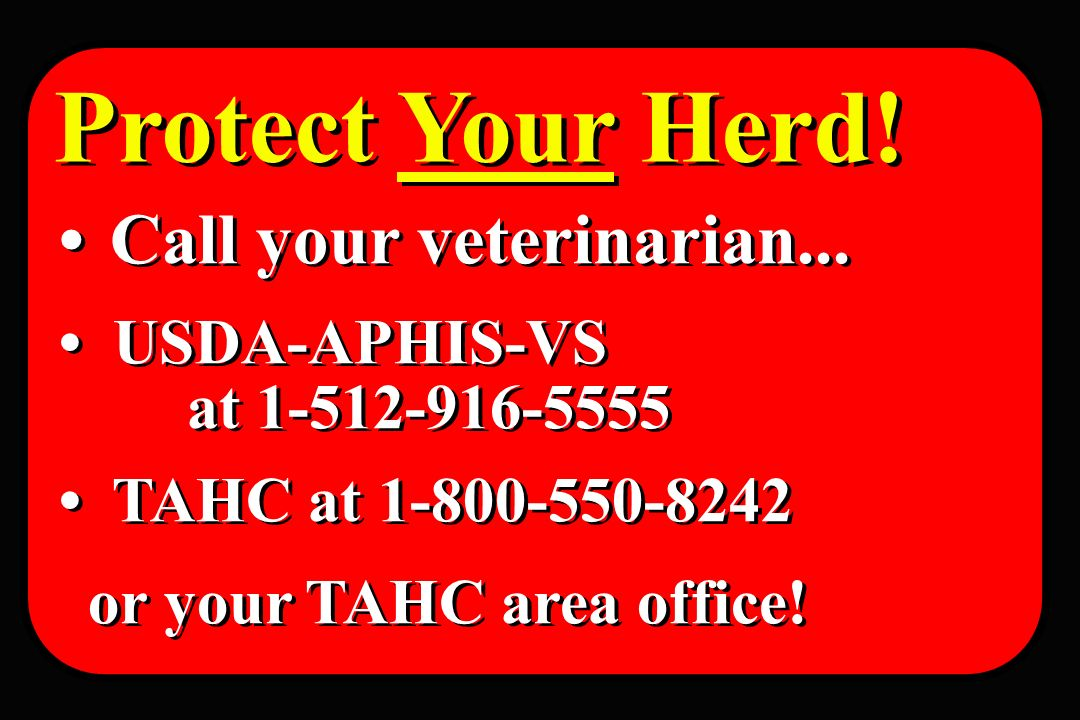 Protect Your Herd! • Call your veterinarian... • USDA-APHIS-VS