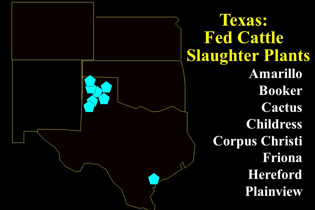 Texas: Fed Cattle Slaughter Plants Amarillo Booker Cactus Childress