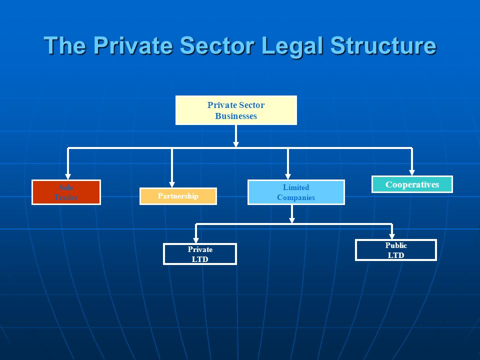 The Private Sector Legal Structure