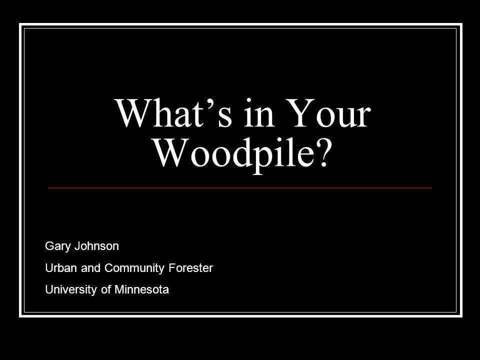 What's in Your Woodpile