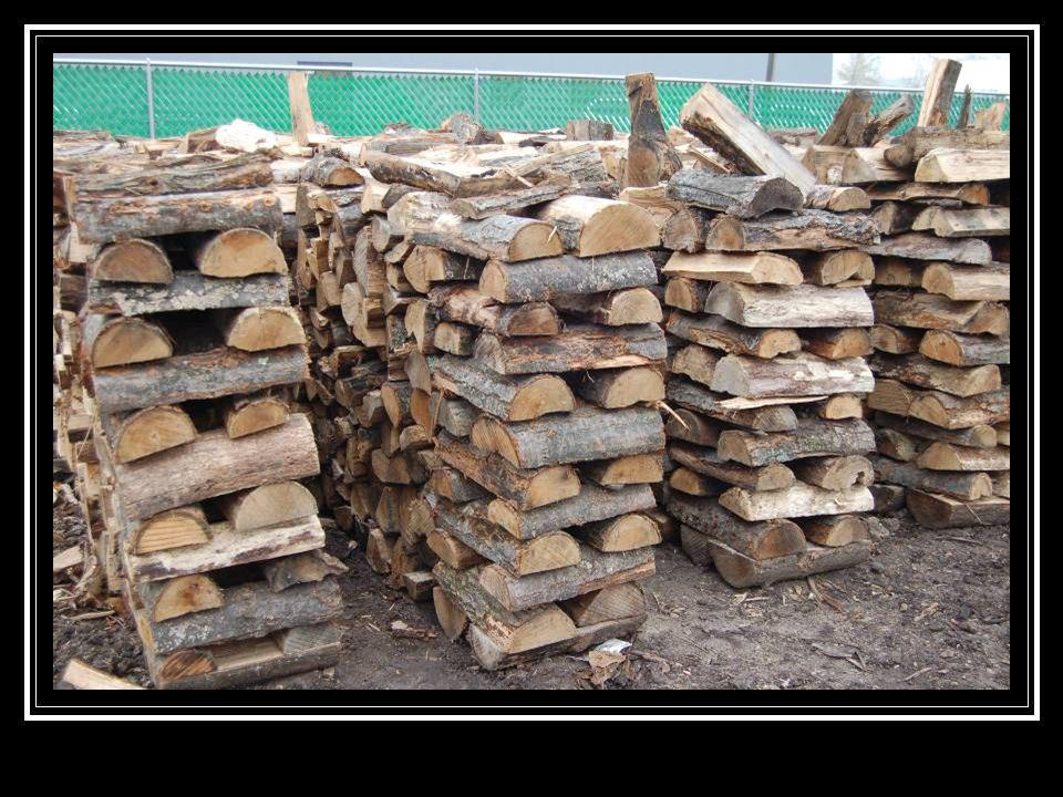A neatly stacked woodpile that looks pretty safe