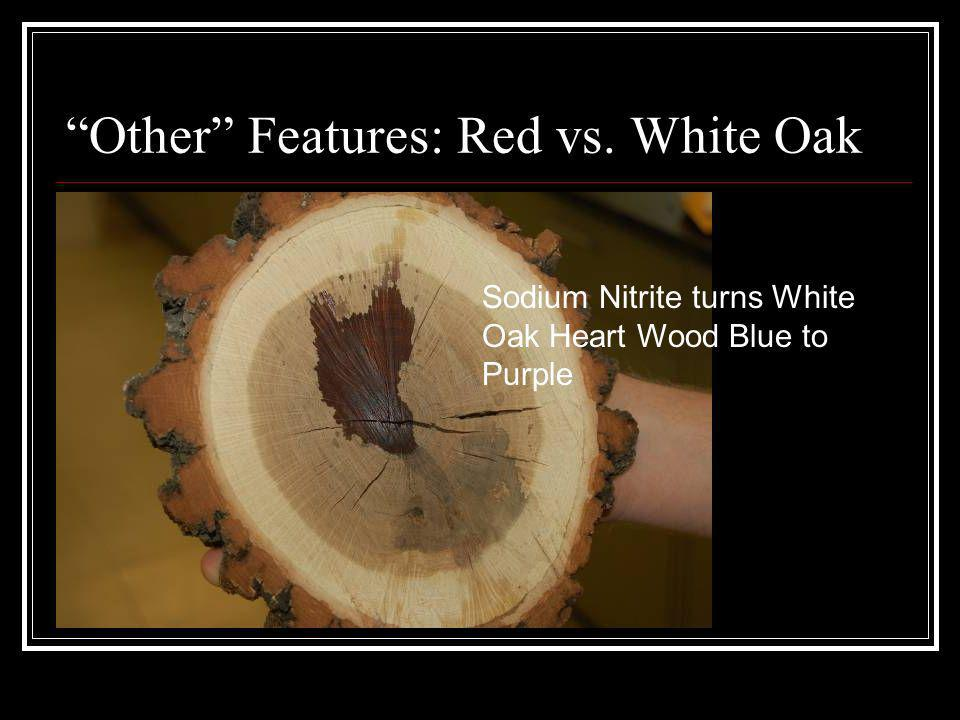 Other Features: Red vs. White Oak