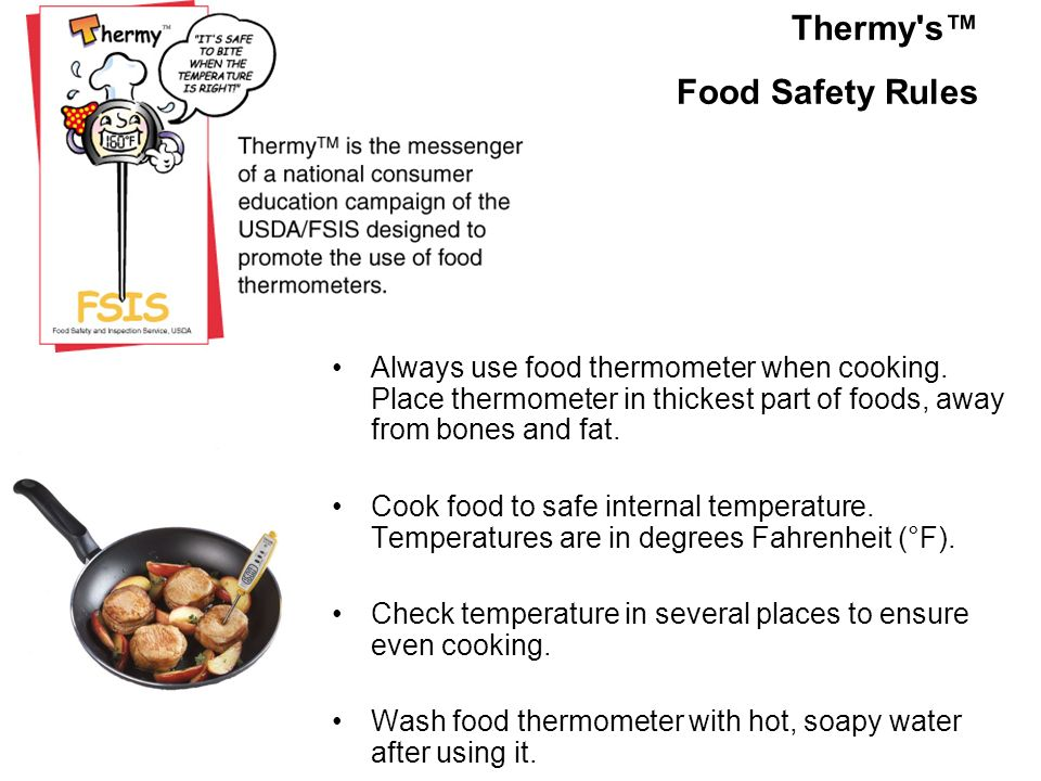 Thermy s™ Food Safety Rules