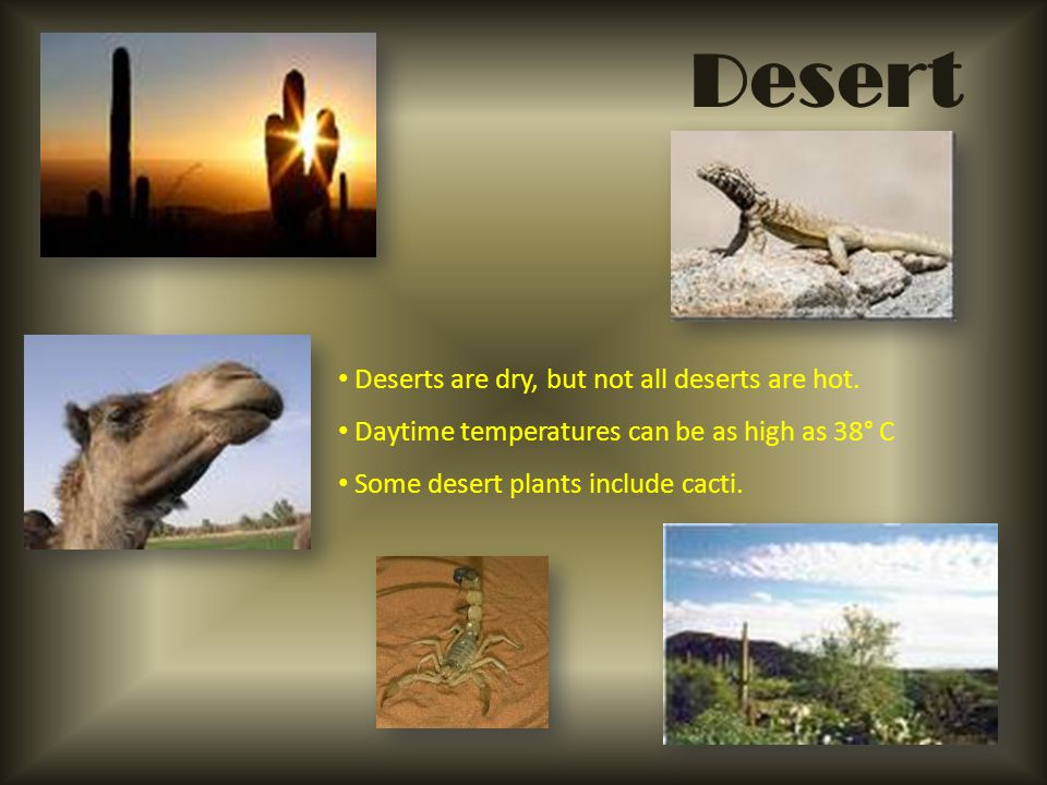 Desert Deserts are dry, but not all deserts are hot.