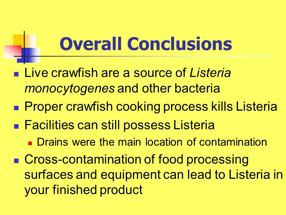 Overall Conclusions Live crawfish are a source of Listeria monocytogenes and other bacteria. Proper crawfish cooking process kills Listeria.