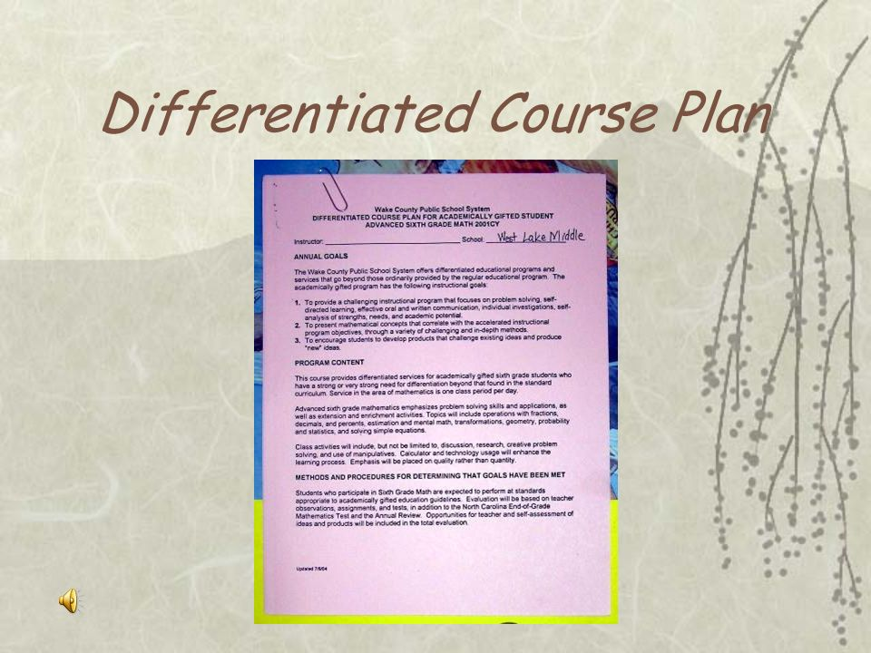 Differentiated Course Plan