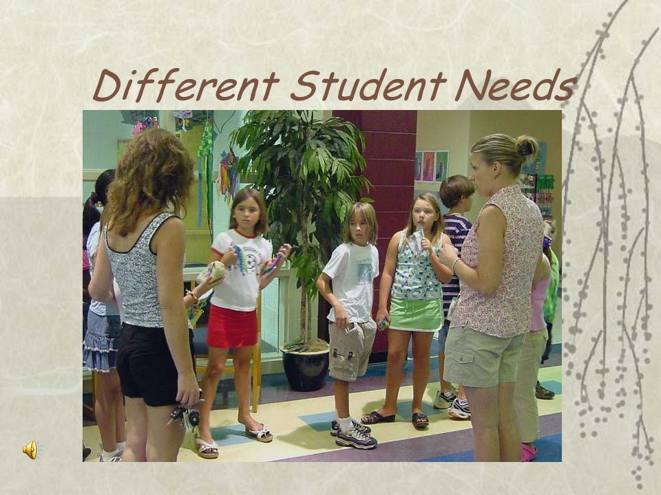 Different Student Needs