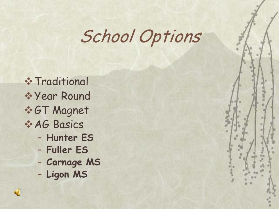 School Options Traditional Year Round GT Magnet AG Basics Hunter ES