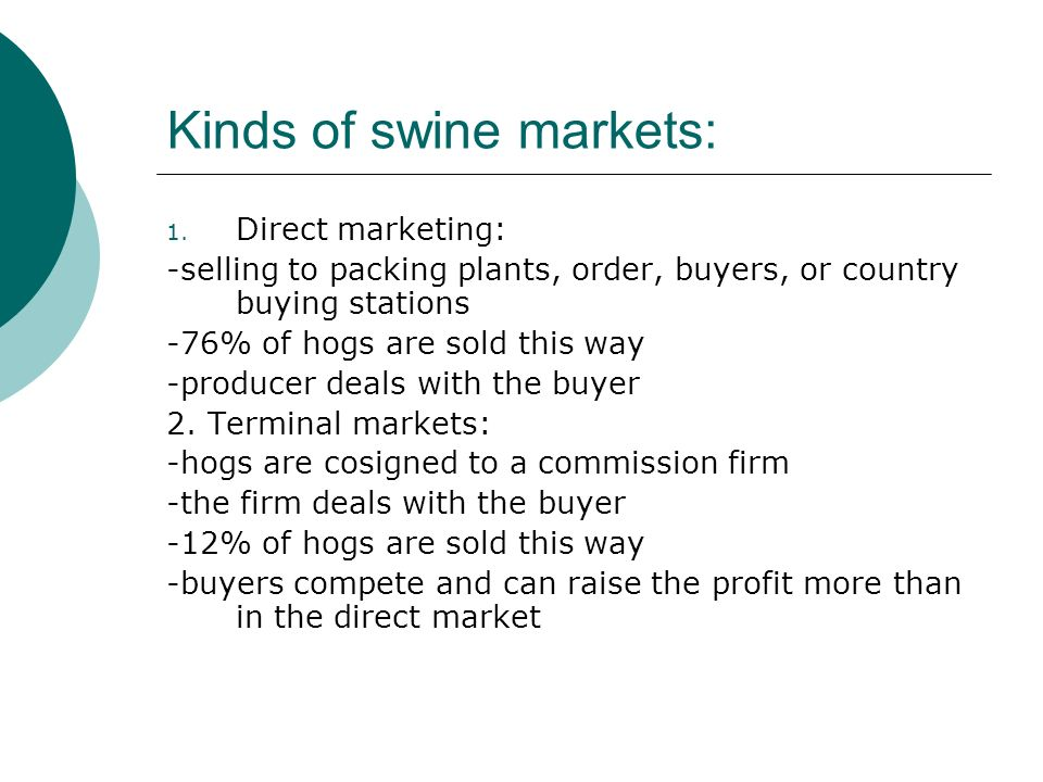 Kinds of swine markets: