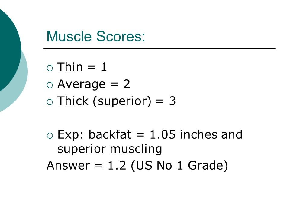 Muscle Scores: Thin = 1 Average = 2 Thick (superior) = 3