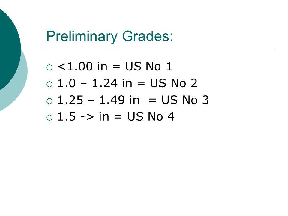 Preliminary Grades: <1.00 in = US No 1 1.0 – 1.24 in = US No 2