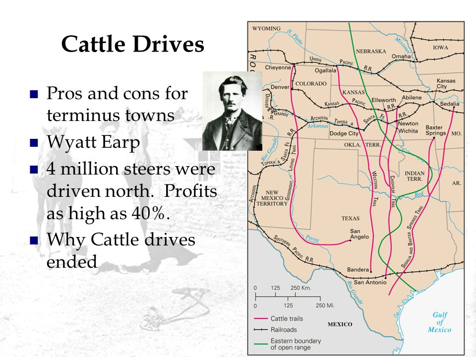 Cattle Drives Pros and cons for terminus towns Wyatt Earp